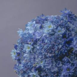 marimo-blue-1