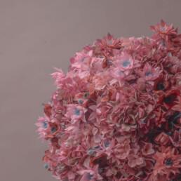 marimo-floreale-rosa-rosa-1