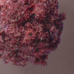 marimo-floreale-rosa-rosa-2